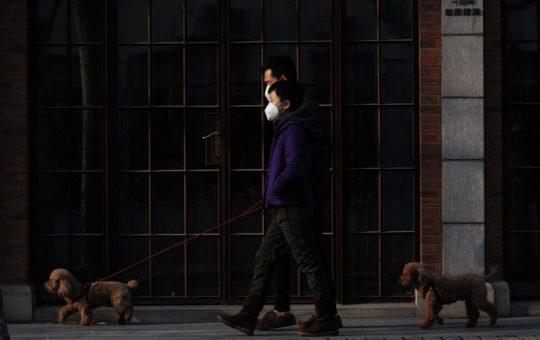 Coronavirus Cases Explode in South Korea