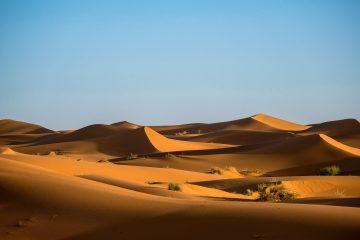 Desert Problem – Earth Creation Science