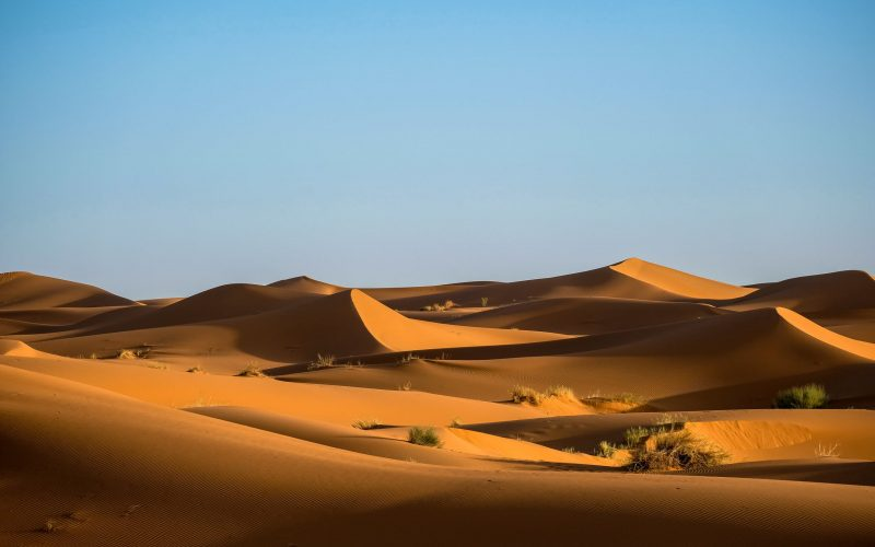 Desert Problem For Young Earth Creation Science