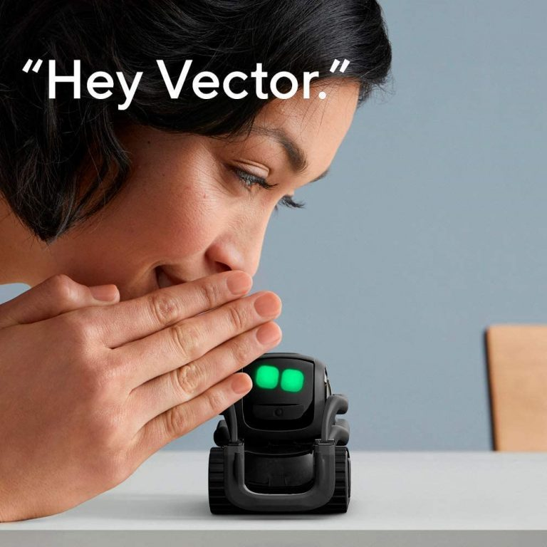 Vector Robot by Anki, A Home Robot Who Hangs Out & Helps Out,