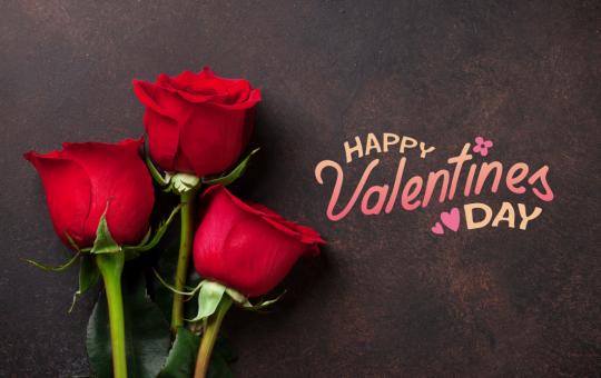 Happy valentine's day to my wonderful parents