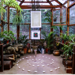 How To Control The Humidity Level In A Greenhouse?