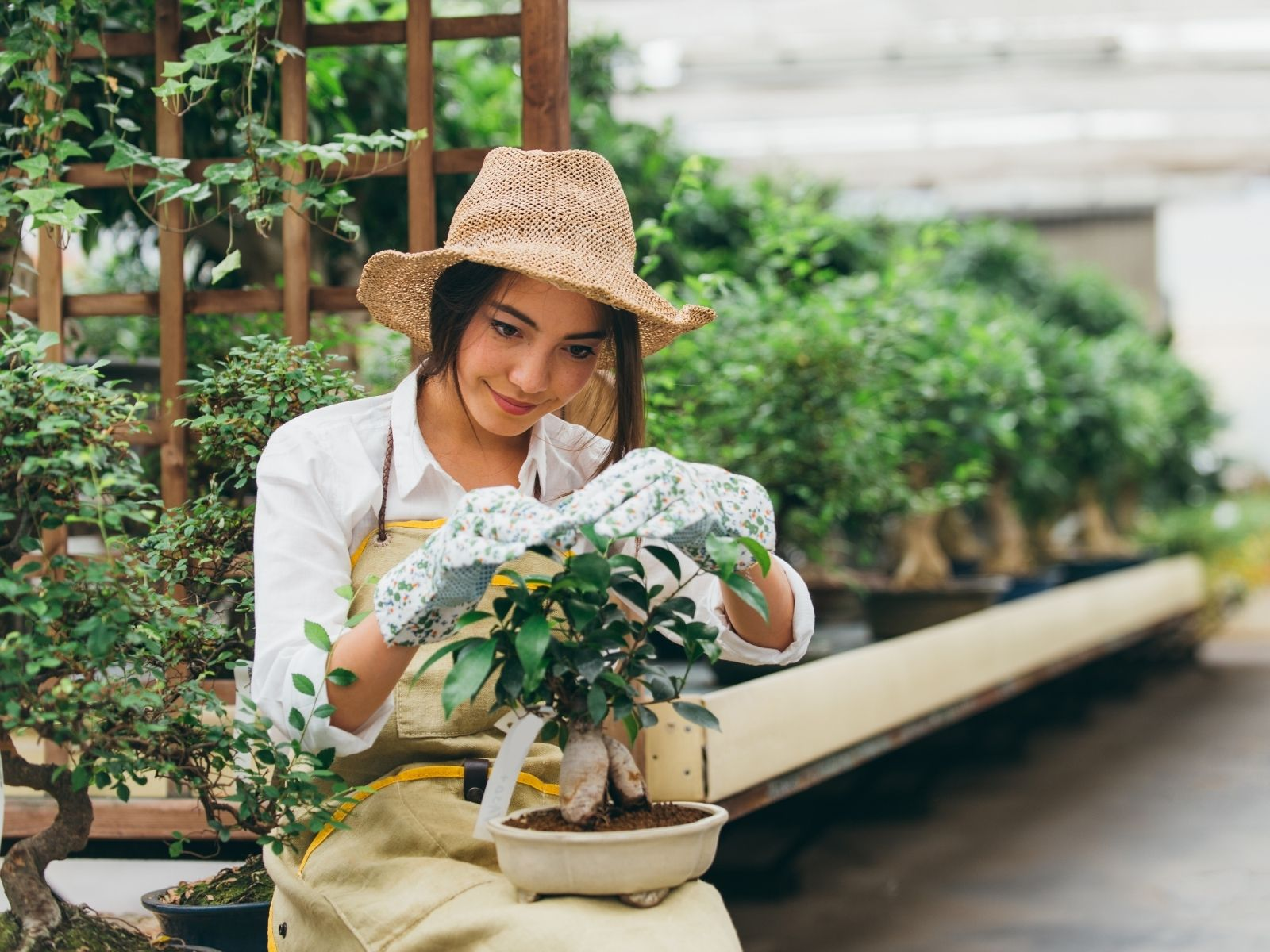 Gardening is fun, here are some tips