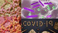 The Coronavirus Is Mutating